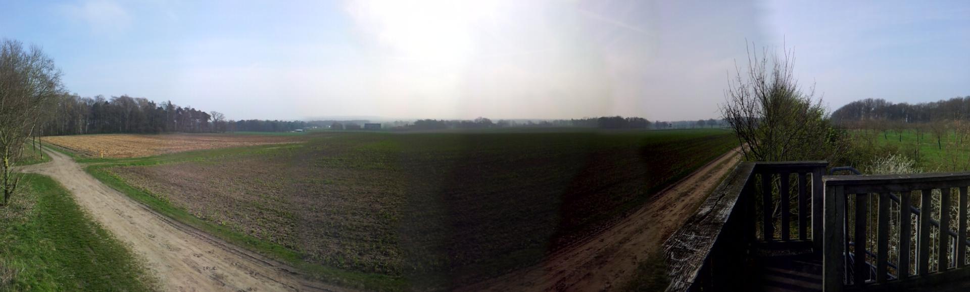 Das Lohner Moor