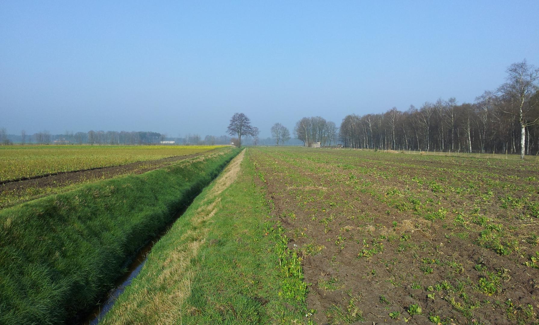 Entwässerungsgräben