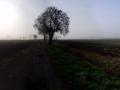 Via Baltica - Etappe 15