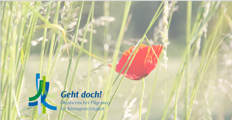 Postkarte Mohn. Natur schützen.